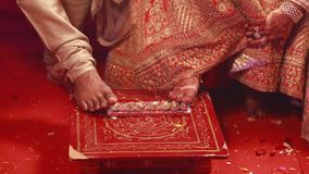 Hindu Indian wedding ceremony ritual stock video footage