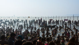 Hindu pilgrims bathing in the sacred confluence at Kumbha Mela, India. Royalty Free Stock Photos