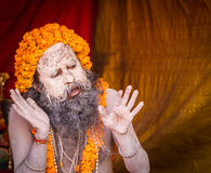 A Hindu priest preaching at the Kumbha Mela in India. Royalty Free Stock Photography