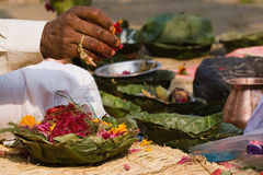 Hindu priest's hand during Shivaratri festival, Nepal Royalty Free Stock Image