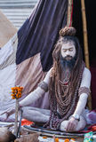 Hindu Sadhu at the Kumbha Mela in India. Royalty Free Stock Images