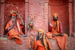 Hindu saints or sadhu posing for a photo royalty free stock photo