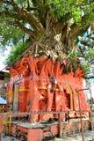 Hindu Tree shrine in Kathmandu, Nepal Royalty Free Stock Images