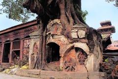 Hindu Tree shrine in Kathmandu, Nepal Royalty Free Stock Image