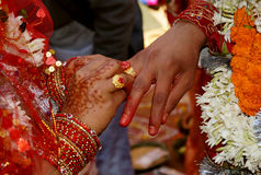 Hindu Wedding Ritua Royalty Free Stock Photo