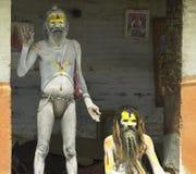 hinduisk helig mannepal sadhu Arkivbilder