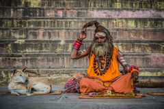 hinduisk monk varanasi royaltyfria foton