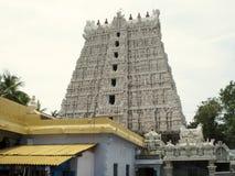 Hinduisk tempel i söderna av Indien Royaltyfri Foto