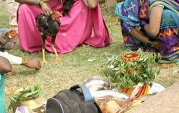 Hinduiska fantaster bär Bonam till templet arkivbild