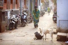 Hinduiska kvinnor på gatorna av den sakrala Varanasi gamla staden Royaltyfria Foton