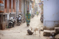 Hinduiska kvinnor på gatorna av den sakrala Varanasi gamla staden Royaltyfri Bild
