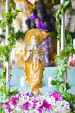 hinduiskt Royaltyfri Fotografi