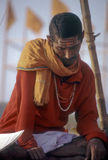 Hinduistischer Pilgerer stockfoto