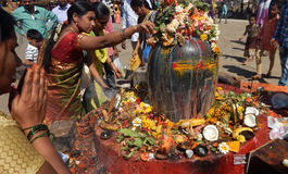Hindus perform Puja to lord Shiva stone statue, near the temple, in Mahasihvaratri fesival Royalty Free Stock Photos