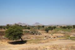 hindusa krajobraz Zdjęcia Stock