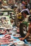 hindusa rybi rynek Obraz Stock