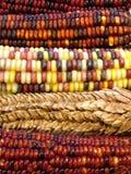 hindusi kukurydziany Zdjęcie Stock
