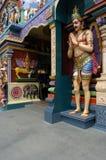 hindusi zobaczyć boskości do świątyni Zdjęcie Stock