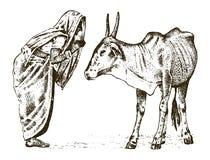 Hinduski michaelita z świętą indoaryjską krową w India ilustracji