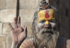 Hinduski Sadhu portret, Kathmandu, Nepal Obraz Stock