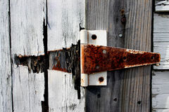 Hinge. On shed Stock Photography