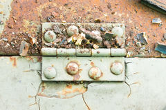 Hinge and Rust and Rivet on Old Light Green Metal Sheet Horizontal Stock Image