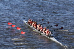 Hingham HS Crew races in the Head of Charles Regatta Men`s Youth Eight Royalty Free Stock Photography