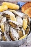 Hink av ångade musslor Royaltyfri Foto