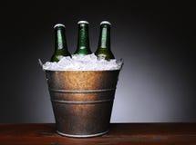 Hink av öl på trä Royaltyfri Bild