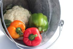 Hink av grönsaker royaltyfria bilder
