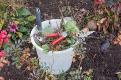 Hink med trädgårds- hjälpmedel och trädgårdavfalls Arkivfoton