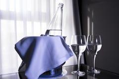 Hink med vattenflaskan och två exponeringsglas Fotografering för Bildbyråer
