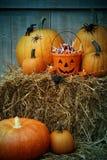 Hink som fylls med den halloween godisen och pumpor Royaltyfri Fotografi