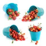 Hinken av inställda Cherry och jordgubbar Royaltyfri Foto