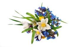 hinken blommar ängfjädern Royaltyfri Bild