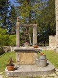hinken blommar den gammala wellen Royaltyfri Foto