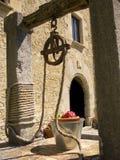 hinken blommar den gammala wellen Fotografering för Bildbyråer