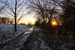 Hint of sunset in snowy landscape Stock Image