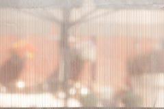 Hinter dem Trennvorhang Lizenzfreie Stockbilder