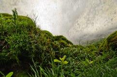 Hinter dem Wasserfall Lizenzfreie Stockbilder