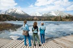 Hintere Ansicht ?ber drei weibliche Touristen, die durch gefrorenes Gebirgsla bleiben lizenzfreies stockbild