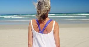 Hintere Ansicht der älteren Frau gehend am Strand stock footage