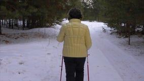 Hintere Ansicht der Frau geht durch Winterwald mit skandinavischen nordischen Pfosten stock video