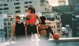 Hintere Ansicht des athletischen Mannes und der Frauen, die auf Dachspitze sitzen lizenzfreie stockfotografie