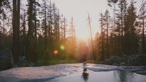 Hintere Ansicht des freien glücklichen jungen Mannes, der den erstaunlichen Sonnenuntergang wandert an Yosemite-Park mit kleiner  stock footage