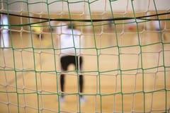 Hintere Ansicht des futsal Torhüters mit Netz von Toren Lizenzfreies Stockbild