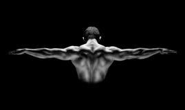 Hintere Ansicht des gesunden muskulösen Mannes mit seinen Armen ausgedehnt heraus lokalisiert auf schwarzem Hintergrund Stockfotografie