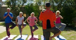 Hintere Ansicht des kaukasischen männlichen Trainers, der ältere Leute ausbildet, wenn Yoga am Garten von n 4k durchgeführt wird stock footage