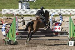 Hintere Ansicht des Pferds mit dem Reiter, der einen Sprung macht Lizenzfreie Stockfotos