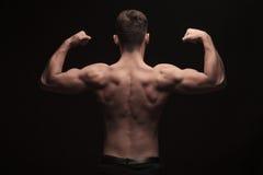 Hintere Ansicht des schulterfreien muskulösen Mannes, der im Studio aufwirft Stockfotos
